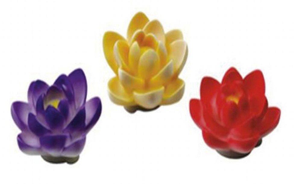Plovoucí květ